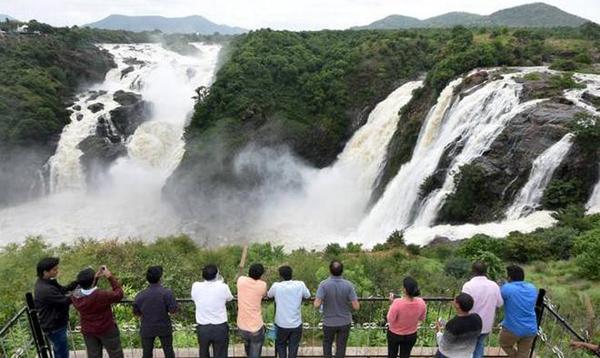 Bio Diversity Park to be built near Bharachukki Falls at Rs 100 cr