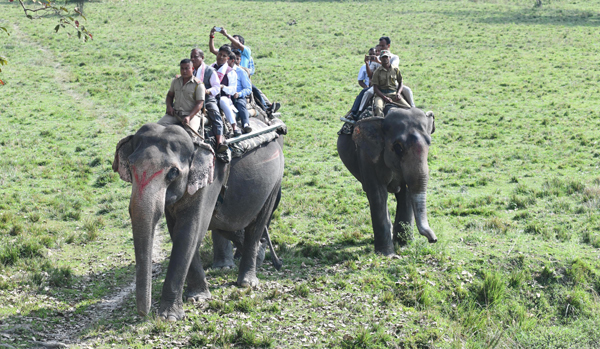 KAZIRANGA, NOV 6 (UNI):- Assam Forest Minister Parimal Suklabaidy on an elephant safari at Pabitora wild life century on Wednesday. UNI PHOTO-43U
