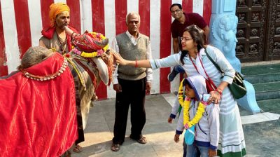 NEW DELHI, NOV 20 (UNI):- A woman devotee seeking the blessings of a religious Bull at Vinayak temple, in Delhi on Wednesday.UNI PHOTO BY SESHADRI SUKUMAR-20U
