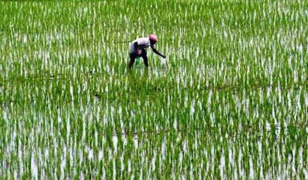 Officials asked to correct data of PM-KISAN scheme in UP