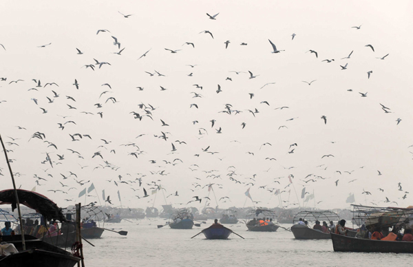 PRAYAGRAJ, NOV 4 (UNI):- Migratory birds flying over Ganga river during a smoggy morning in Prayagraj on Monday. UNI PHOTO-11U