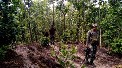PAKUR, NOV 25 (UNI):- Jharkhand Armed Police jawans in search operation against naxals after an emergency alert by the Superintendent of Police Pakur district Rajiv Ranjan Singh for Assembly election inside the dense forest of Amrapara area of Pakur, on Monday.UNI PHOTO-44U