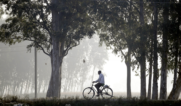 JAMMU, NOV 19 (Xinhua) -- A man rides a bicycle amid dense fog on the outskirts of Jammu, the winter capital of Indian-controlled Kashmir, on Nov. 18, 2019. Xinhua/ UNI PHOTO-8F