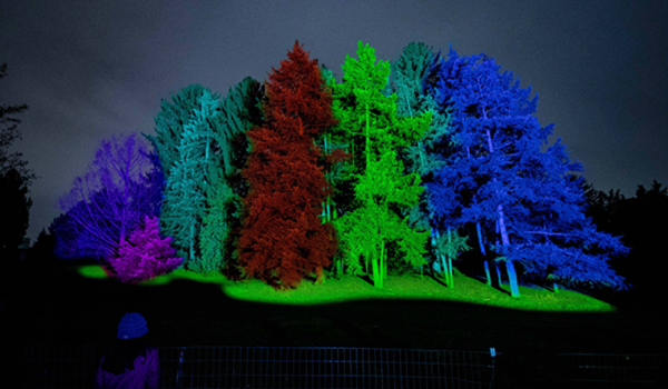 CHICAGO, Dec. 27, 2019 (Xinhua) -- Trees are illuminated at Illumination: Tree Lights at The Morton Arboretum in Lisle, Illinois, the United States, on Dec. 26, 2019. (Photo by Joel Lerner/Xinhua/IANS)