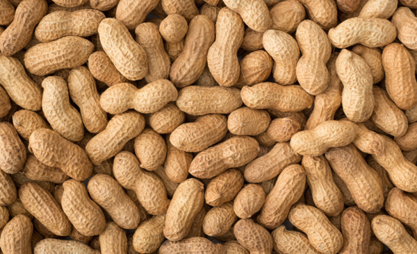 Peanuts, eggs may prevent food allergies in high risk infants