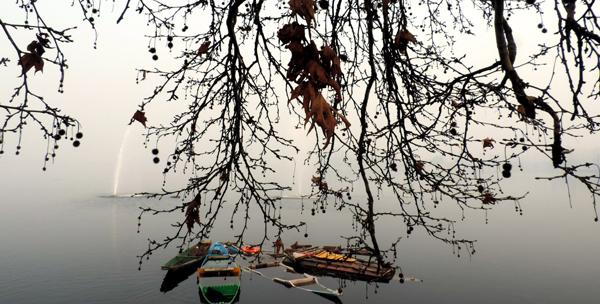 SRINAGAR, DEC 5 (UNI) Dense fog engulfed the famous Dal Lake as temperature dipped to minus 3.5 in Srinagar on Thursday. UNI SRN PHOTO 6.