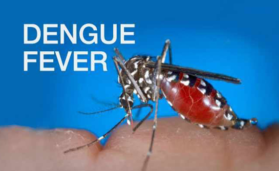 Dengue fever death toll surges to 123 across Myanmar