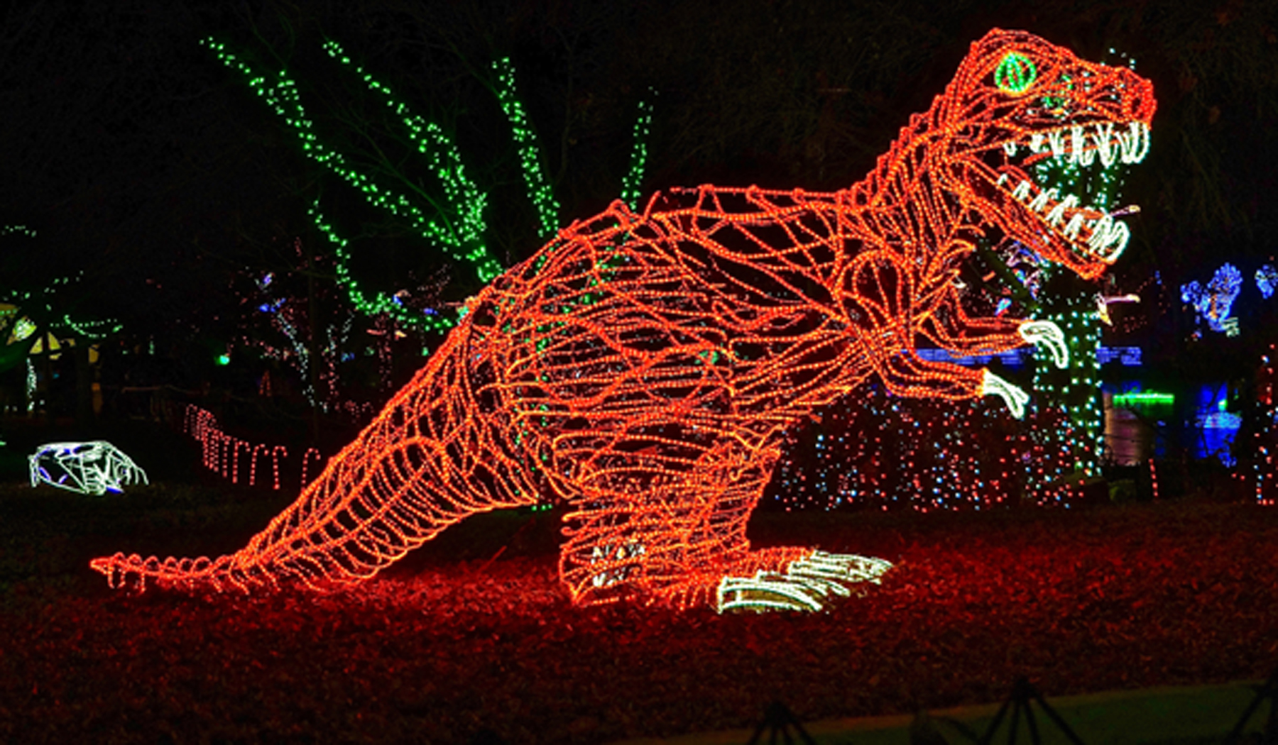 (191222) -- ALBUQUERQUE (U.S.), Dec. 22, 2019 (Xinhua) -- Photo taken on Dec. 21, 2019 shows an illuminated dinosaur during River of Lights at ABQ BioPark Botanic Garden in Albuquerque, New Mexico, the United States. The annual walk-through light show River of Lights, with millions of twinkling lights and nearly 600 dazzling holiday displays, stages here during the month of December. (Photo by Richard Lakin/Xinhua)