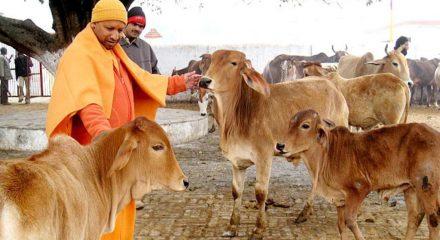 UP Congress wants Yogi govt to set up 'Kisan Aayog'