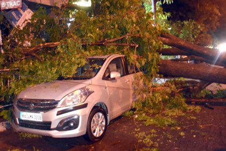 Trees uprooted due to heavy rainfall in Bengaluru