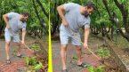 Salman Khan cleans up his Panvel farmhouse to mark Environment Day