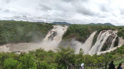 Bengaluru: The Gaganachukki Falls at Shivanasamudra near Bengaluru overflowing due to heavy discharge of water from upstream reservoirs Krishna Raja Sagar (KRS) and Kabini Reservoir, on Aug 7, 2020. (Photo: IANS)