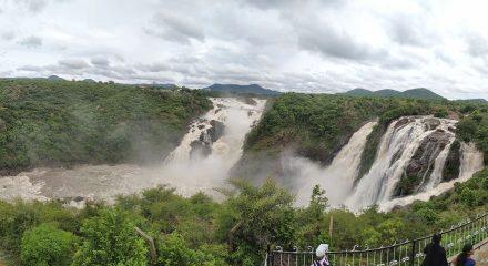 Bengaluru: The Gaganachukki Falls at Shivanasamudra near Bengaluru overflowing due to heavy discharge of water from upstream reservoirs Krishna Raja Sagar (KRS) and Kabini Reservoir, on Aug 7, 2020. (Photo: IANS)