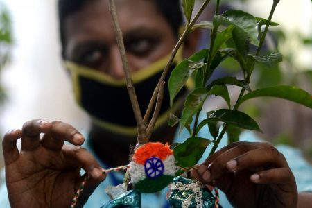 A specially-abled person ties rakhi to a plant on the eve of Raksha Bandhan
