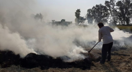India needs to limit carbon emissions: G20 climate report