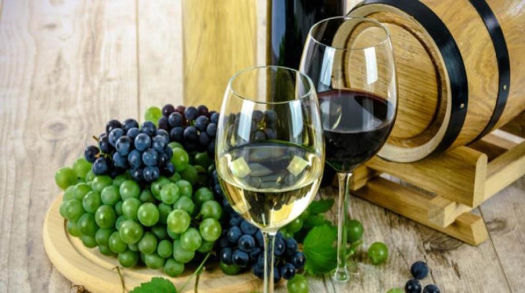 Learning wine etiquette
